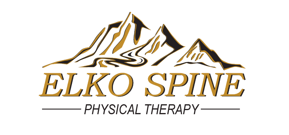 Elko Spine Physical Therapy Logo